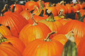 fall things to do in dearborn michigan
